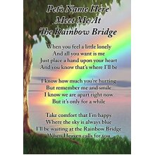 Lisa's Gifts Personalised Meet Me at The Rainbow Bridge Dog Cat Pet Memorial Graveside Funeral Poem Keepsake Card Includes Free Ground Stake F397