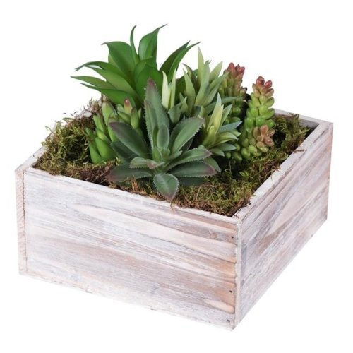 Vickerman F12207 Succulent Arrangement Everyday Floral in Wood Planter - 7 in.