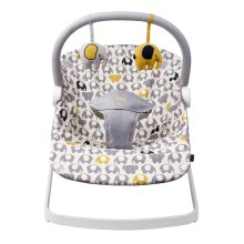 BabaBing Float Baby Bouncer