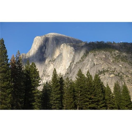 Scenic View of Half Dome From Yosemite Valley Yosemite National Park - California United States of America Poster Print - 38 x 24 in. - Large