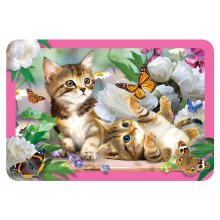 Playtime Super 3D Effect Placemat