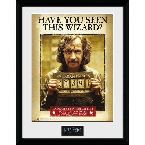 Harry Potter Sirius Azkaban Collector Print