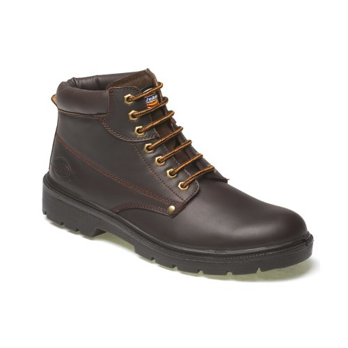 (Size 12) Dickies Antrim Safety Work Boots Brown (Sizes 7-12) Men's Steel Toe Cap Shoes