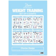Weight Training Bodybuilding Exercises Set Of 6 Charts