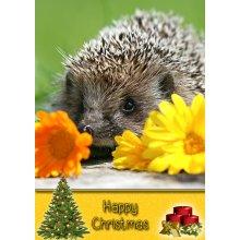 "Hedgehog Christmas Greeting Card 8""x5.5"""