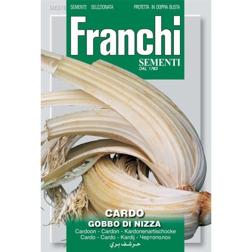 Franchi Seeds of Italy - DBO 22/8 - Cardoon -  Gobbo Di Nizza - Seeds