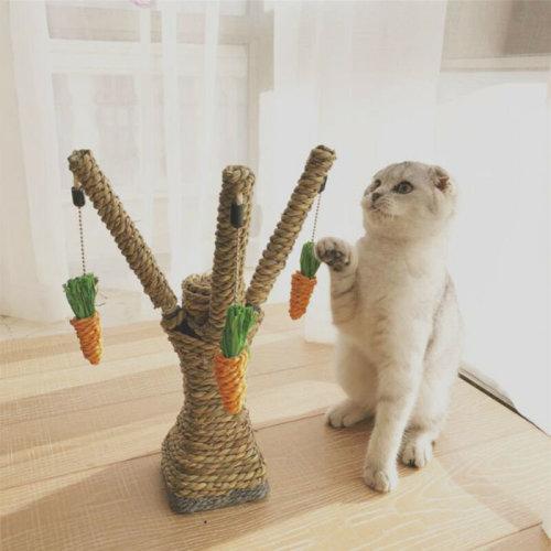 Cat Kitten Scratching Post Toy Tree Scratcher Sisal Rope Activity Climbing New