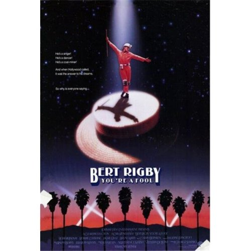 Bert Rigby You Are a Fool Movie Poster - 11 x 17 in.