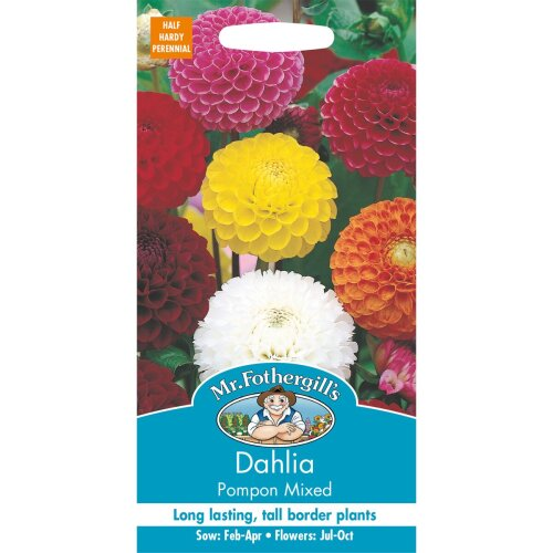 Mr Fothergills - Pictorial Packet - Flower - Dahlia Pompon Mixed - 50 Seeds