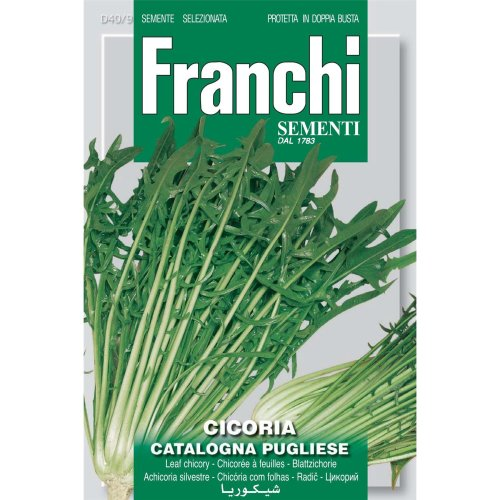 Franchi Seeds of Italy - DBO 40/9 - Chicory - Catalogna Pugliese - Seeds
