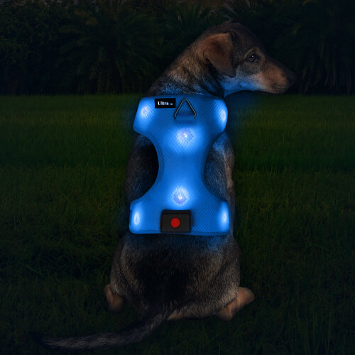 (Blue, S) Ultra Rechargeable LED Dog Harness Flashing Light Up Glow Night Safety Vest Coat