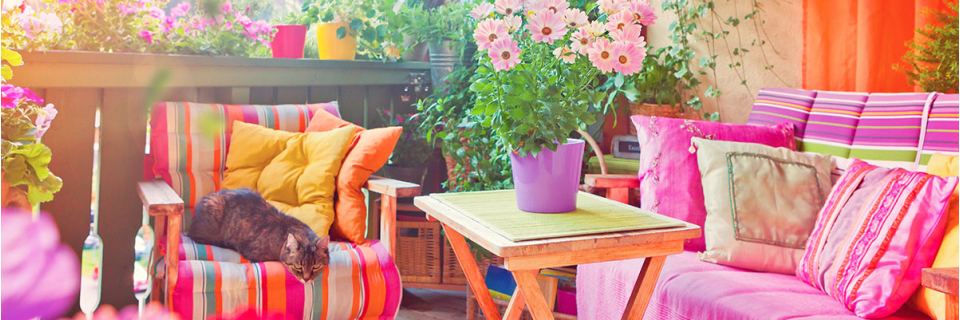 bright plants in outdoor space