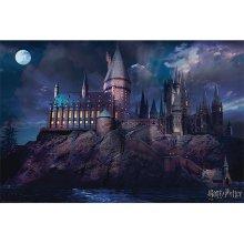 Harry Potter Hogwarts Scene Poster