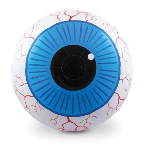 Water Polo Eyeball Eyeball huge ball 50cm inflatable Size