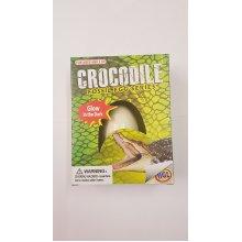 Hgl Glow In The Dark Crocodile Fossil Egg