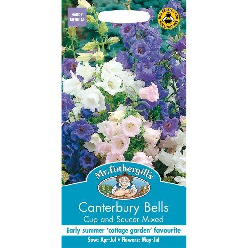 Mr Fothergills - Pictorial Packet - Flower - Canterbury Bells - Cup & Saucer Mix - 650 Seeds