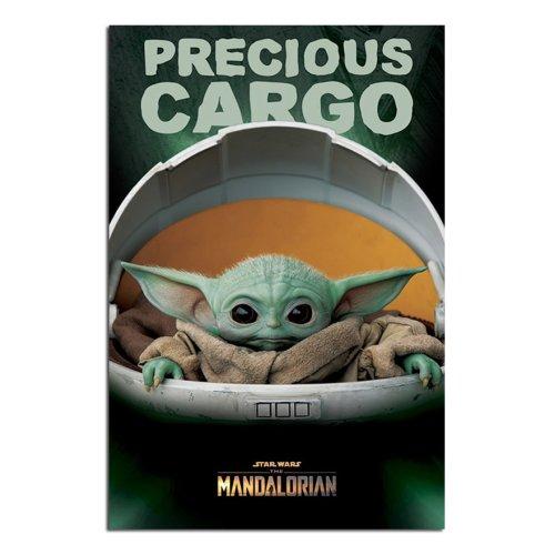 Star Wars The Mandalorian Precious Cargo Poster Maxi - 91.5 x 61cms (36 x 24 Inches)