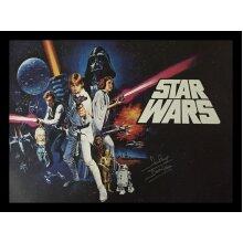 Framed Dave Prowse Darth Vader Star Wars signed poster with COA