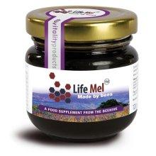 LifeMel Honey 120g