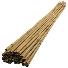 Abaseen Bamboo Canes Strong Heavy Duty Professional Garden Plant Support Sticks 2FT 3FT 4FT 5FT 6FT 7FT (5, 2ft, 6-8mm)