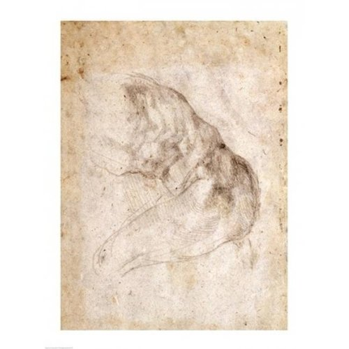 Study for The Creation of Adam Poster Print by Michelangelo Buonarroti - 24 x 36 in. - Large