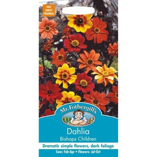 Mr Fothergills - Pictorial Packet - Flower - Dahlia Bishops Children - 40 Seeds