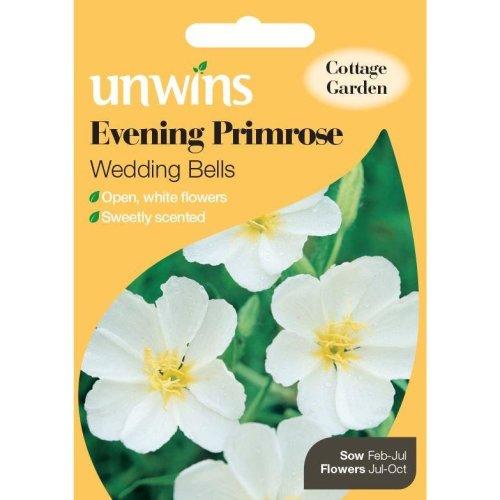 Unwins Grow Your Own Evening Primrose Wedding Bells Flower Seeds