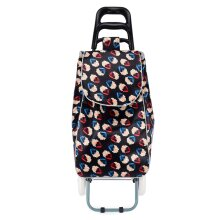 HGRQ339 BLACK - Assorted Colors - Flowers Pattern Printed Trolley Bag