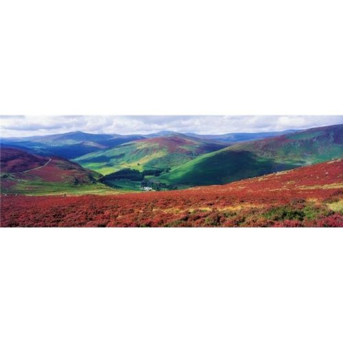 Wicklow Way Co Wicklow Ireland - Long Distance Walking Trail Near Luggala Poster Print by The Irish Image Collection, 44 x 14 - Large