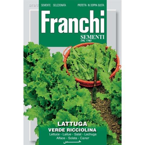 Franchi Seeds of Italy - DBO 78/2 - Lettuce - Verde Ricciolina Da Taglio - Seeds