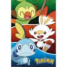 Pokemon Galar Starter Pokemon Poster