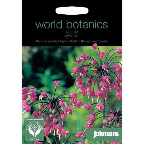 Johnsons World Botanics Flower - Pictorial Pack - Allium cernuum - 30 Seeds