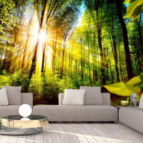Wallpaper - Forest Hideout