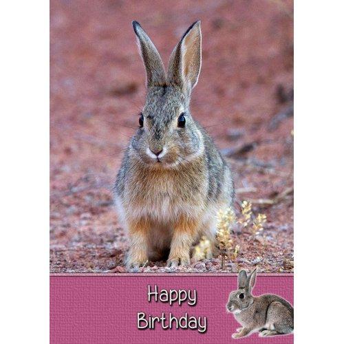 """Bunny Rabbit Birthday Greeting Card 8""""x5.5"""""""