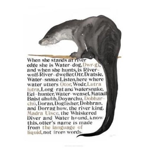 Jackie Morris The Names of the Otter Poster