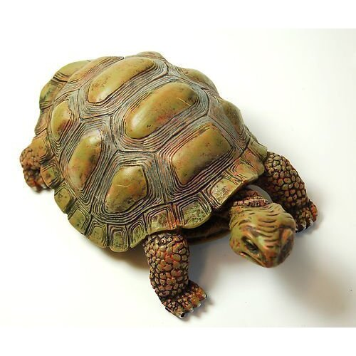 Garden Tortoise Ornament