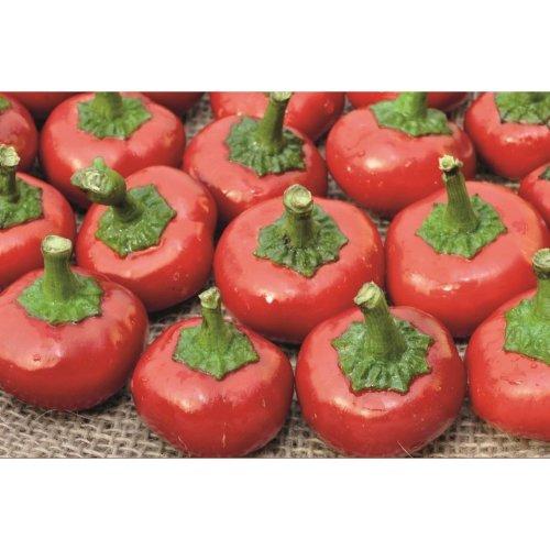 Vegetable - Pepper (Chilli) - Cherry Bomb - 50 Seeds