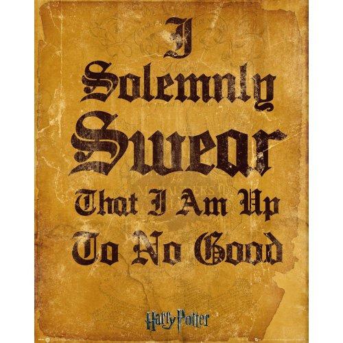 Harry Potter I Solomnly Swear Mini Poster