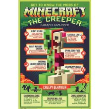 Minecraft Creeper Poster