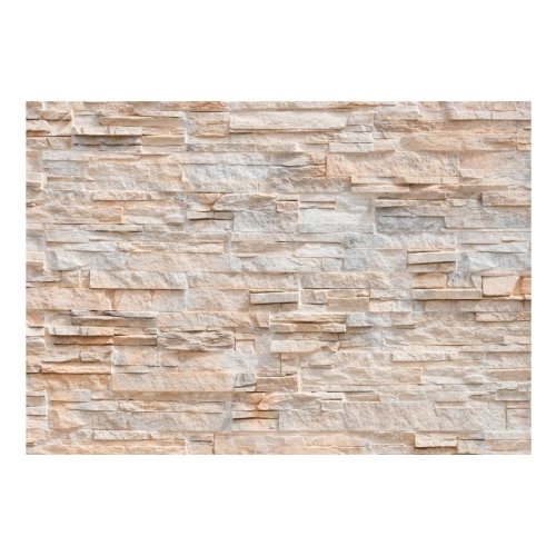 Stony Gracefulness Stone Effect Wallpaper Mural