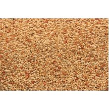 SkyGold Popular Foreign Finch Cage & Aviary Seed Mix 20Kg