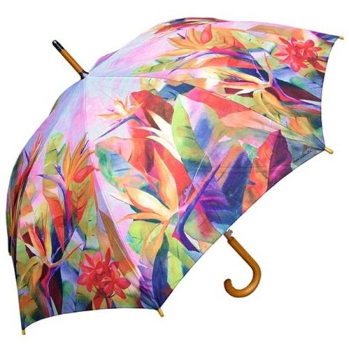 RainStoppers W3562BIRDS 46 in. Auto Open Birds of Paradise Print Umbrella with Wood Hook Handle, 12 Piece