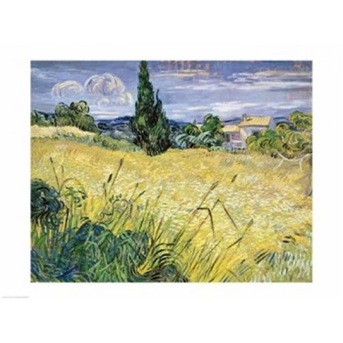 Landscape with Green Corn 1889 Poster Print by Vincent Van Gogh - 24 x 18 in.