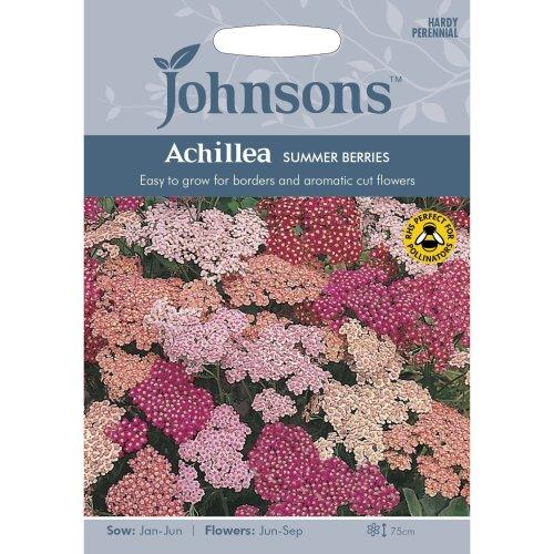 Johnsons Seeds - Pictorial Pack - Flower - Achillea Summer Berries - 50 Seeds