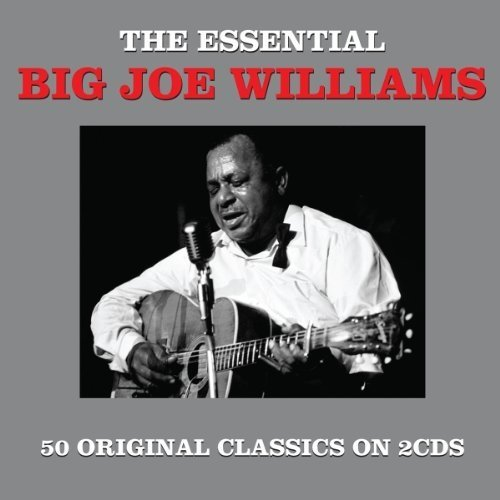 Big Joe Williams - the Essential Big Joe Williams [double Cd]