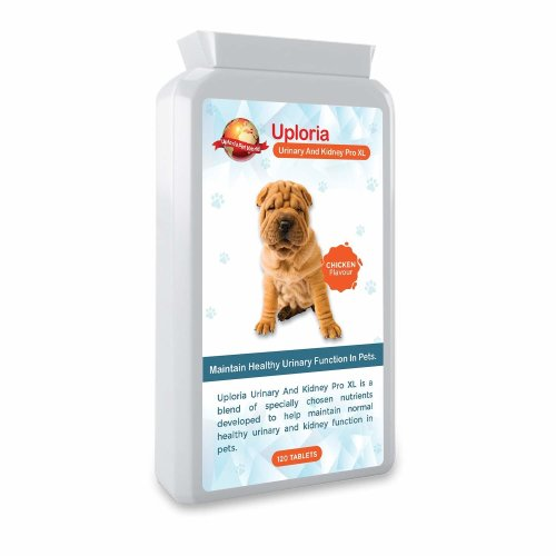 UTI  With Urinary And Kidney Support For Cats And Dogs