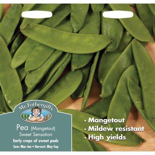 Mr Fothergills - Pictorial Packet - Vegetable - Pea Sweet Sensation - 150 Seeds