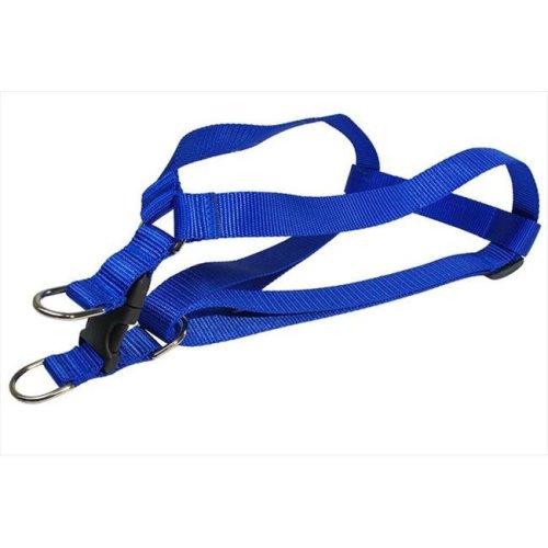 Nylon Webbing Dog Harness, Blue - Small
