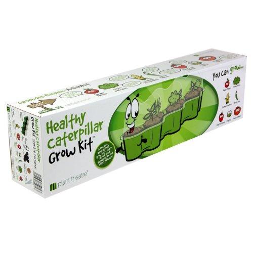 Plant Theatre Healthy Caterpillar Grow Kit