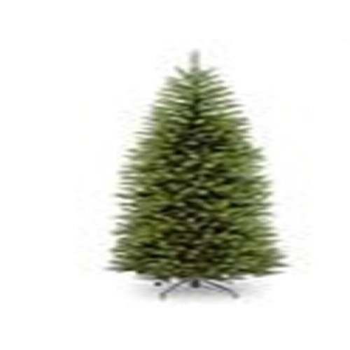 National Tree KW7-500-65 6.5 ft. Kingswood Fir Hinged Pencil Tree